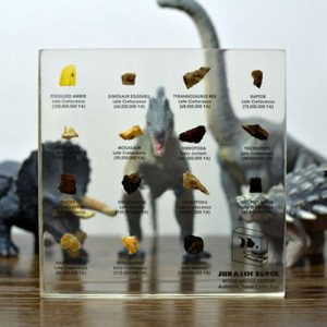 Jurassic Block Dinosaur Fossil Collection