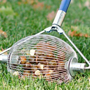 Nut & Golf Ball Collector