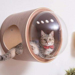 Spaceship Cat Beds