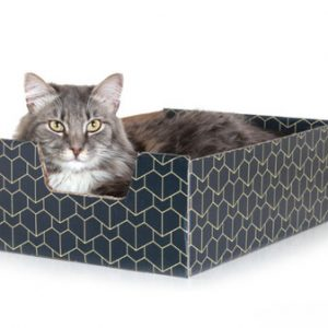 The Purrfect Cat Box