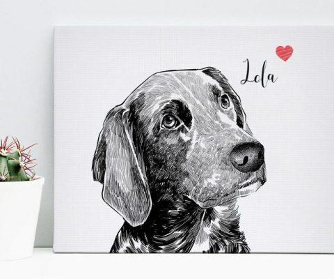 Custom Pet Canvas Portraits