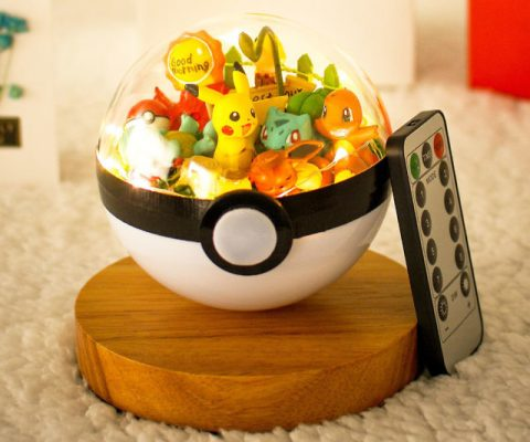 Pokemon Poke Ball Terrarium