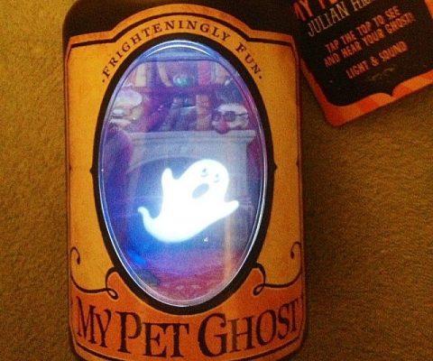 Pet Ghost In A Bottle