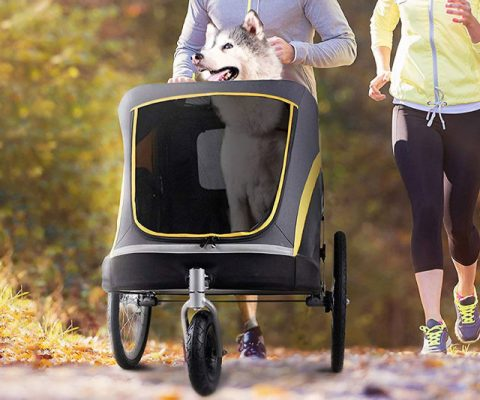 The Pet Stroller