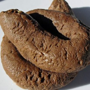 Dog Poop Shaped Soap