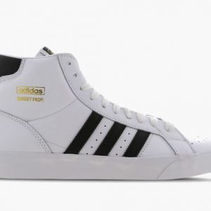 Adidas Original Basketball Sneakers