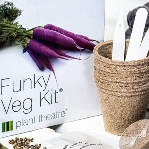 The DIY Vegetable Growing Kit