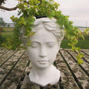 Venus Head Planter