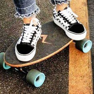 Mini Longboard Cruiser Skateboards