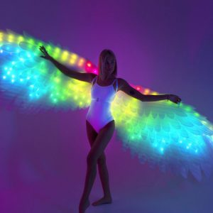 LED Angel Wings