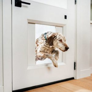 myQ Pet Portal Smart Dog Door