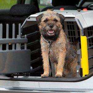 Crash Tested Dog Cage