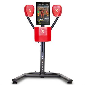 Nexersys N3 Personal Boxing Trainer