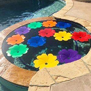 Water Heating Solar Pool Flowers